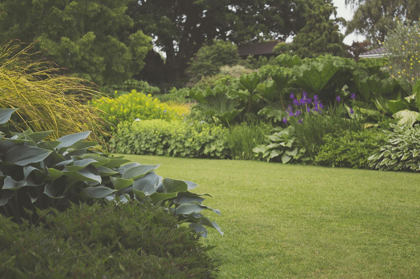 Maak jouw tuin in 2021 zomerklaar